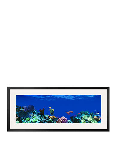 Art.com Underwater, Caribbean Sea Framed Photographic Print