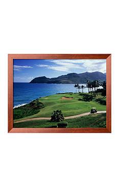Art.com Kauai, Hawaii, USA Framed Photographic Print - Online Only