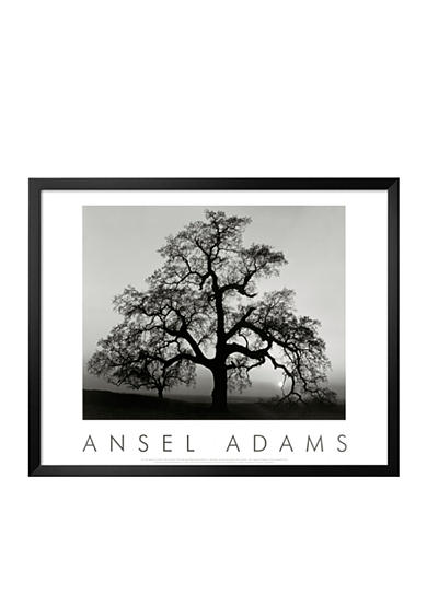 Art.com Oak Tree, Sunset City, California, 1932 Framed Art Print