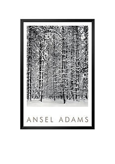 Art.com Pine Forest in Snow, Yosemite National Park, 1932 Framed Art Print