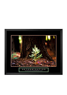Art.com Determination: Little Pine Framed Art Print - Online Only
