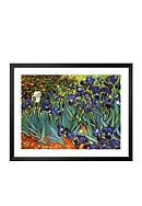 Art.com Garden of Irises Framed Art Print  Online