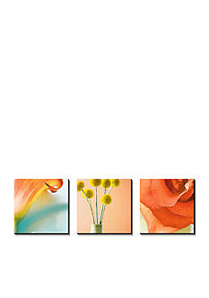 Art.com Tropical Flowers Triptych, Canvas Art Set