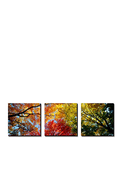 Art.com Colorful Trees in Fall, Autumn, Low Angle View, Canvas Art Set - Online Only<br>