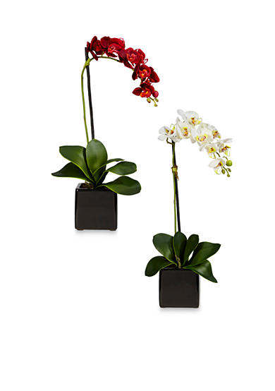 Nearly Natural Phalaenopsis Orchid Silk Arrangement with Black Vase