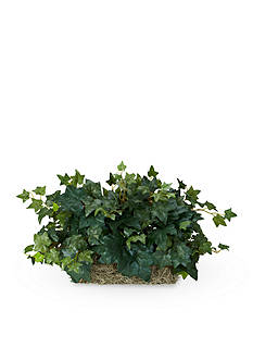 Nearly Natural Ivy Ledge Plant Silk Plant