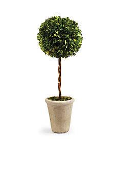 Napa Home & Garden™ Boxwood 23.25-in. Single Sphere Topiary