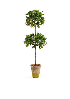Napa Home & Garden™ 31-in. H Potted Double Ficus Topiary