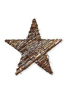 Shea's Wildflower Company 20-in. Natural Twig Lighted Star