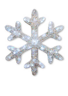 National Tree Company Ice Crystal Snowflake with LED Lights