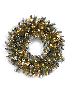 National Tree Company 2-ft. Glittery Bristle Pine Wreath