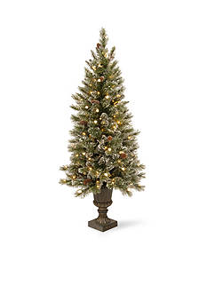 National Tree Company 4-ft. Glittery Bristle Pine Entrance Tree with White Tipped Cones