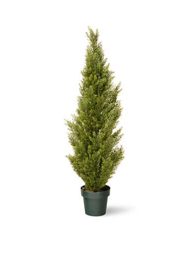 National Tree Company® Arborvitae with Green Pot