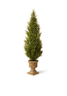 National Tree Company Arborvitae with Urn