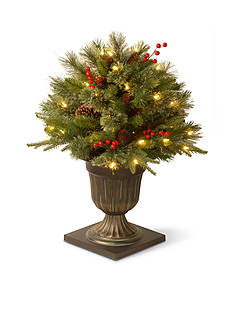 National Tree Company 26-in. Colonial Porch Bush With Cones, and Red Berries