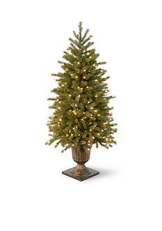 National Tree Company 4-ft. Jersey Fraser Fir Entrance Tree