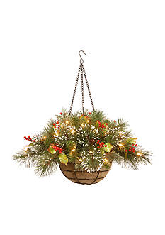 National Tree Company Pine Hanging Basket with Cones And LED Lights