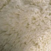 Kassatex Bath Accessories: Ivory Kassatex KASSA RUG 24 40