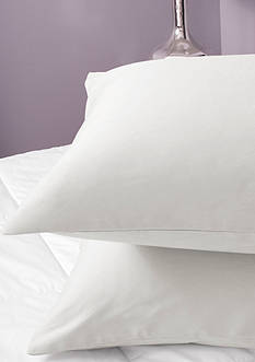 Sealy 300 Thread Count Cotton Sheet Set - Online Only
