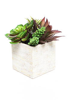 Modern. Southern. Home.™ Small Faux Succulent