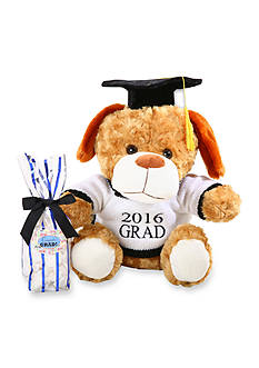 The Gifting Group 2016 Graduation Dog with 2016 Grad Sweater