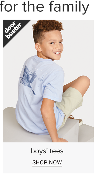 A boy in a light blue tee shirt with a graphic on the back of a bird. Doorbuster. Boys tees. Shop now.