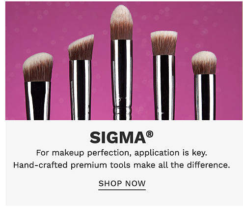 5 makeup brushes in a variety of sizes. Sigma. For makeup perfection, application is key. Hand crafted premium tools make all the difference. Shop now.