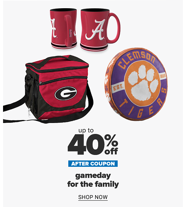 A variety of game day must haves with team logos. Up to 30% off after coupon, gameday for the family. Shop now.