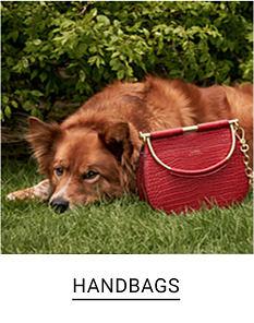 A dog laying down next to a red handbag. Shop handbags.
