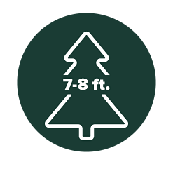 Four illustrated Christmas trees, each with different size ranges on them. Under five feet, five to six feet, seven to eight feet and over eight feet.