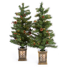A pair of miniature Christmas trees. Shop Christmas decor.