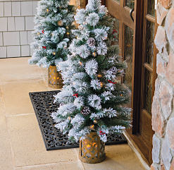 A front door with a small Christmas tree on either side. Shop Christmas decor.
