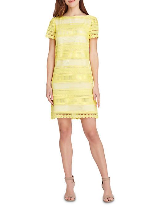 e28d5c06 Tahari ASL Short Sleeve Scallop Edge Chemical Lace Sheath Dress | belk