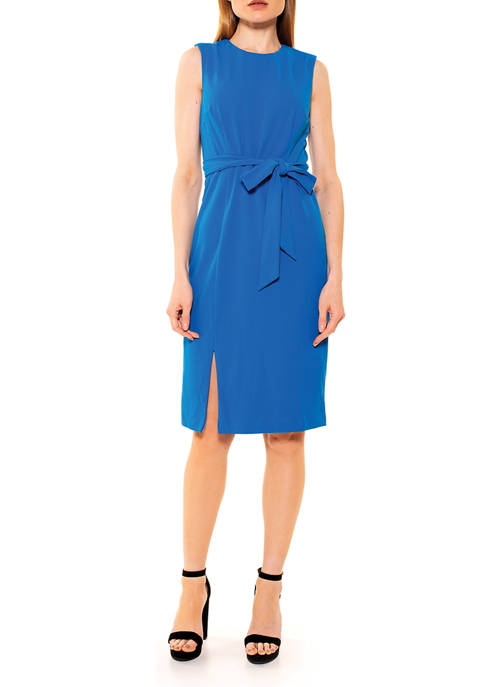 Alexia Admor Womens Kinsley Crew Neck Dress