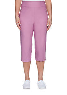 Los Cabos Allured Stretch Pants