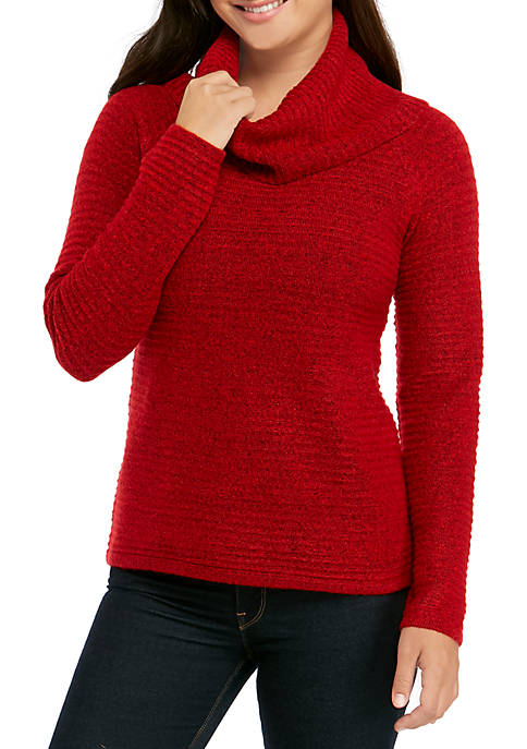 Petite Soft Texture Cowl Neck Solid Sweater