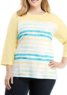 e05486dbc4ae0 Kim Rogers® Plus Size 3 4 Sleeve Crew Neck Stripe Top
