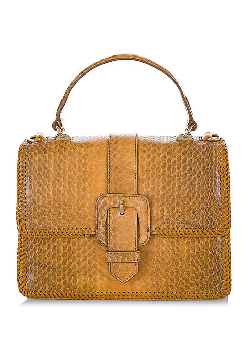 Brahmin Mini Francine Everett Satchel