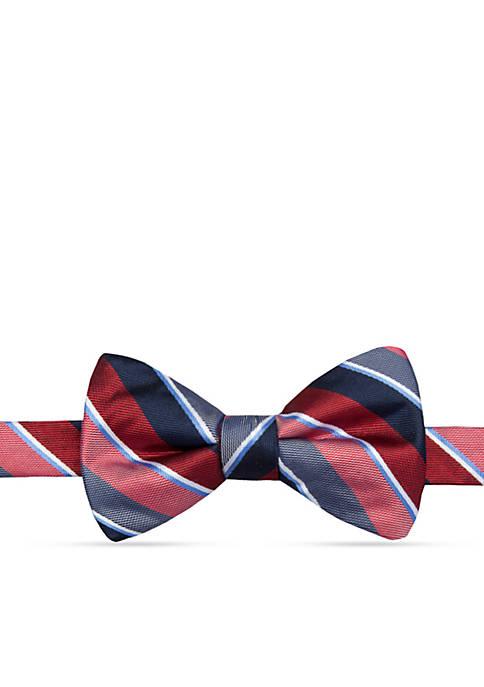 Pre-Tied Zach Stripe Bow Tie