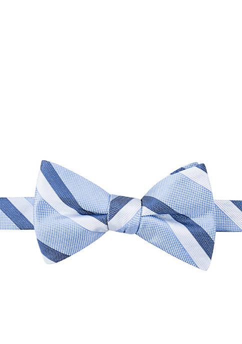 Ashford Stripe Bow Tie