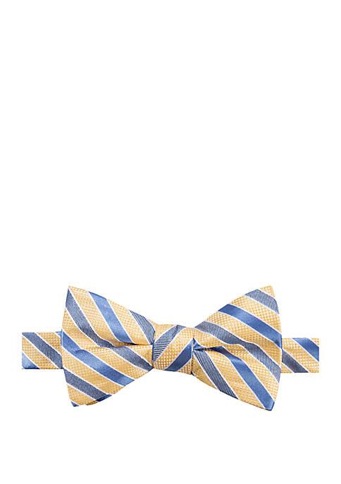 Orwell Stripe Bow Tie