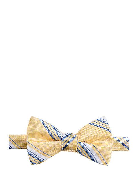 Bromley Stripe Bow Tie