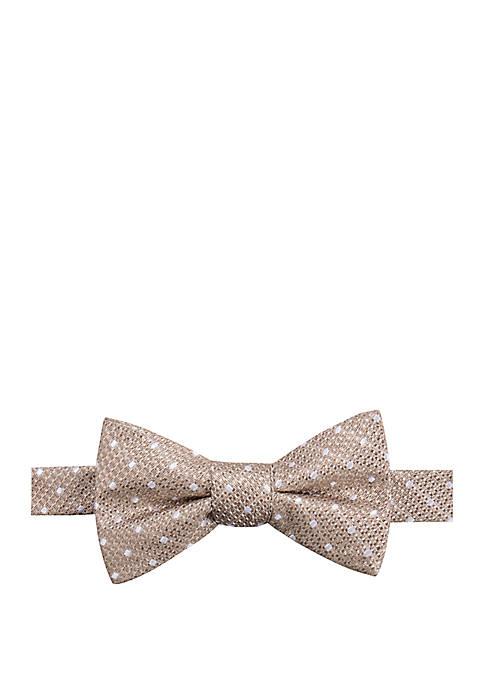 Lewisham Dot Bow Tie