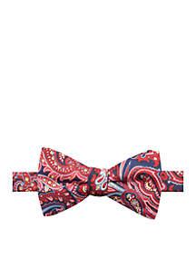 Arthur Paisley Bow Tie