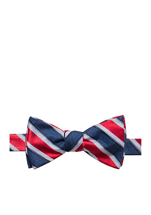 Austin Stripe Bow Tie
