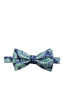 Aiden Paisley Bow Tie