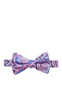 Hacket Paisley Print Bow Tie