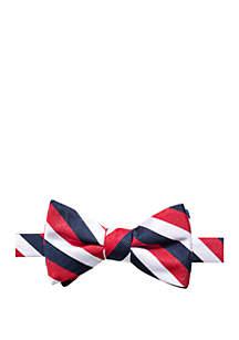 Kelly Stripe Print Bow Tie