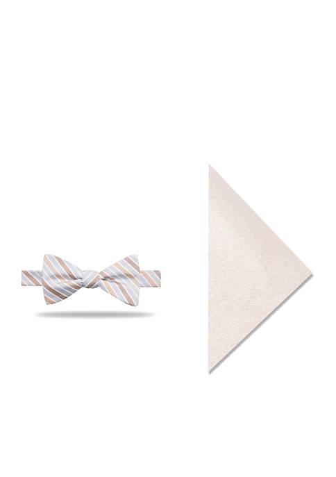 Norman Stripe Bow Tie Set
