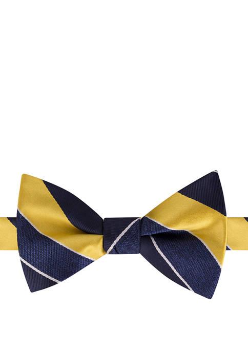 IZOD Baldwin Stripe Pre Tied Bow Tie